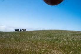 venha conhecer mairinque no seu próprio terreno  !030