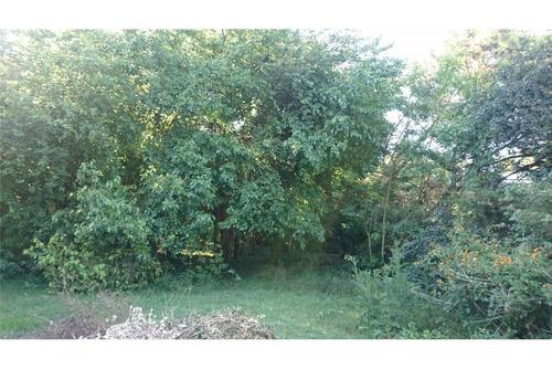 venta 2534m2 terreno forestado, zona polo