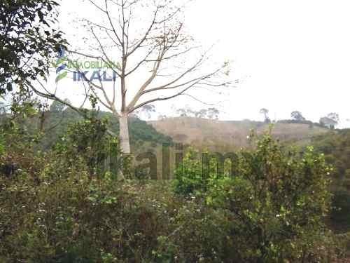 venta 4.96 hectáreas la ceiba papantla veracruz, en el km. 19.5 carretera totomoxtle en el municipio de papantla veracruz. son 4.96 hectáreas cuentas con 100 metros de frente por 496 metros de fondo.