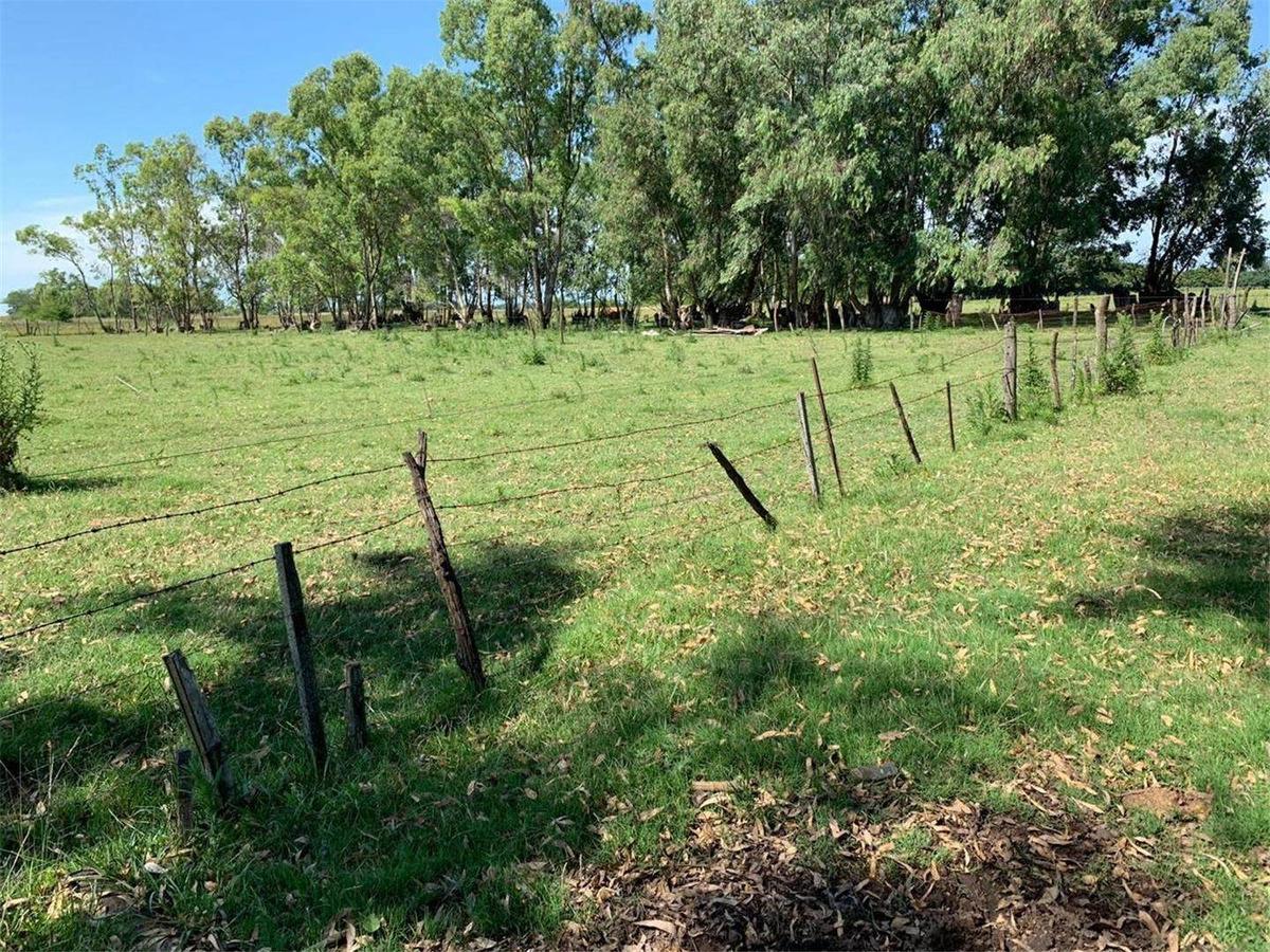 venta- 6 hectáreas en hermosa zona