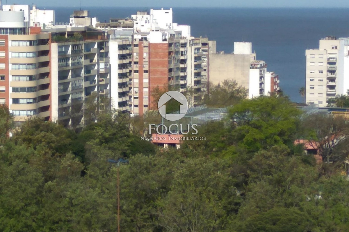 venta apartamento monoambiente con terraza. pocitos