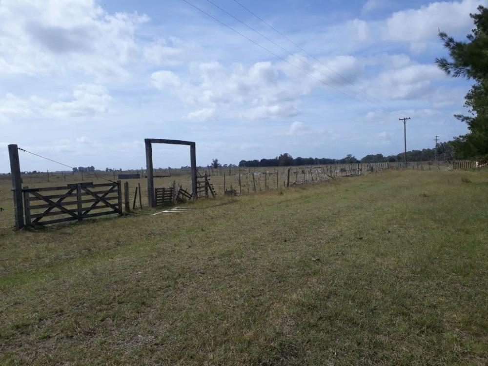 venta campo - 10 hectáreas - el casal
