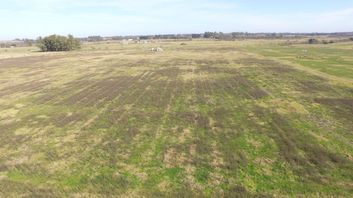 venta campo 3.2 hectareas cerc. al centro. mercedes. permuta