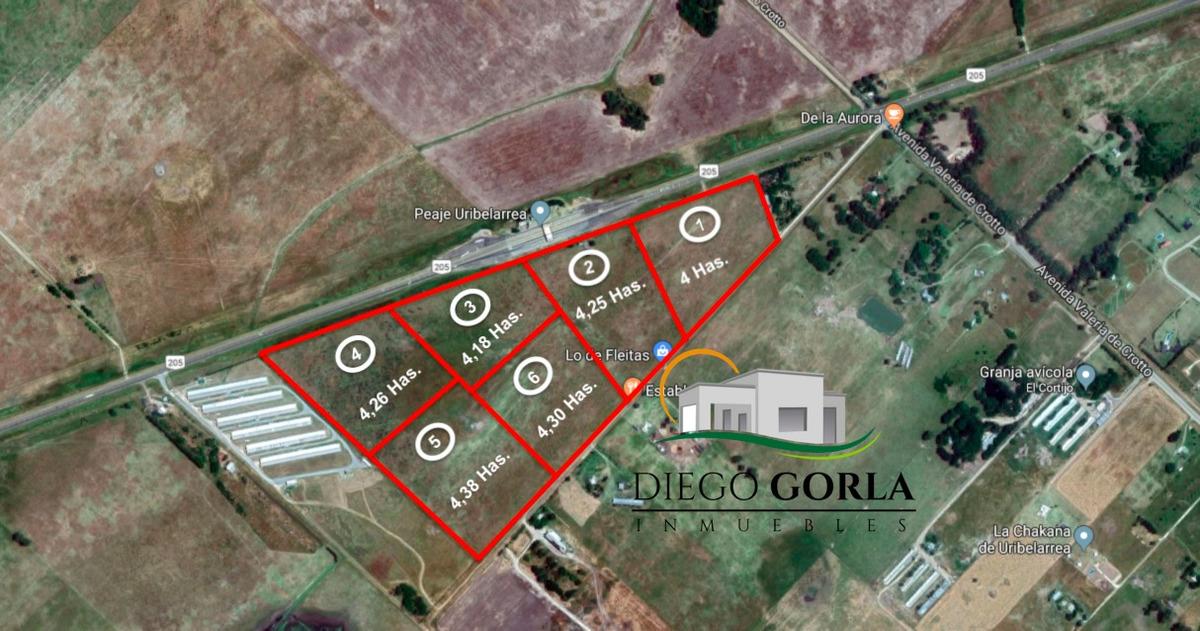 #venta campo 4 - fracción 4.26 has en uribelarrea - cañuelas