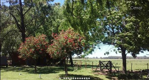 venta campo 4 has en las flores provincia de buenos aires