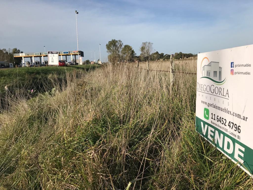 #venta campo 6 - fracción 4.38 has en uribelarrea - cañuelas