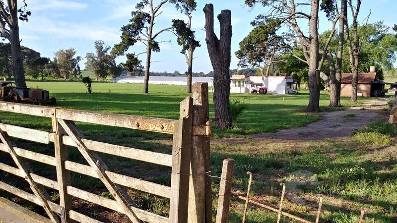 venta campo 6.5 hectareas siembra y/o complejo turístico  renta en usd sierra de los padres