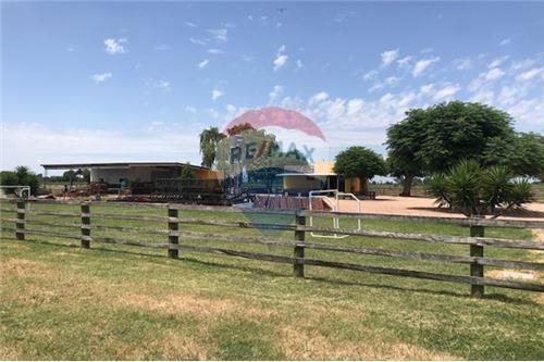 venta campo, chacra 27 hectáreas ganadera