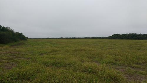 venta campo de 120 has agrícolas a 5km ruta 1 y 35km la paz