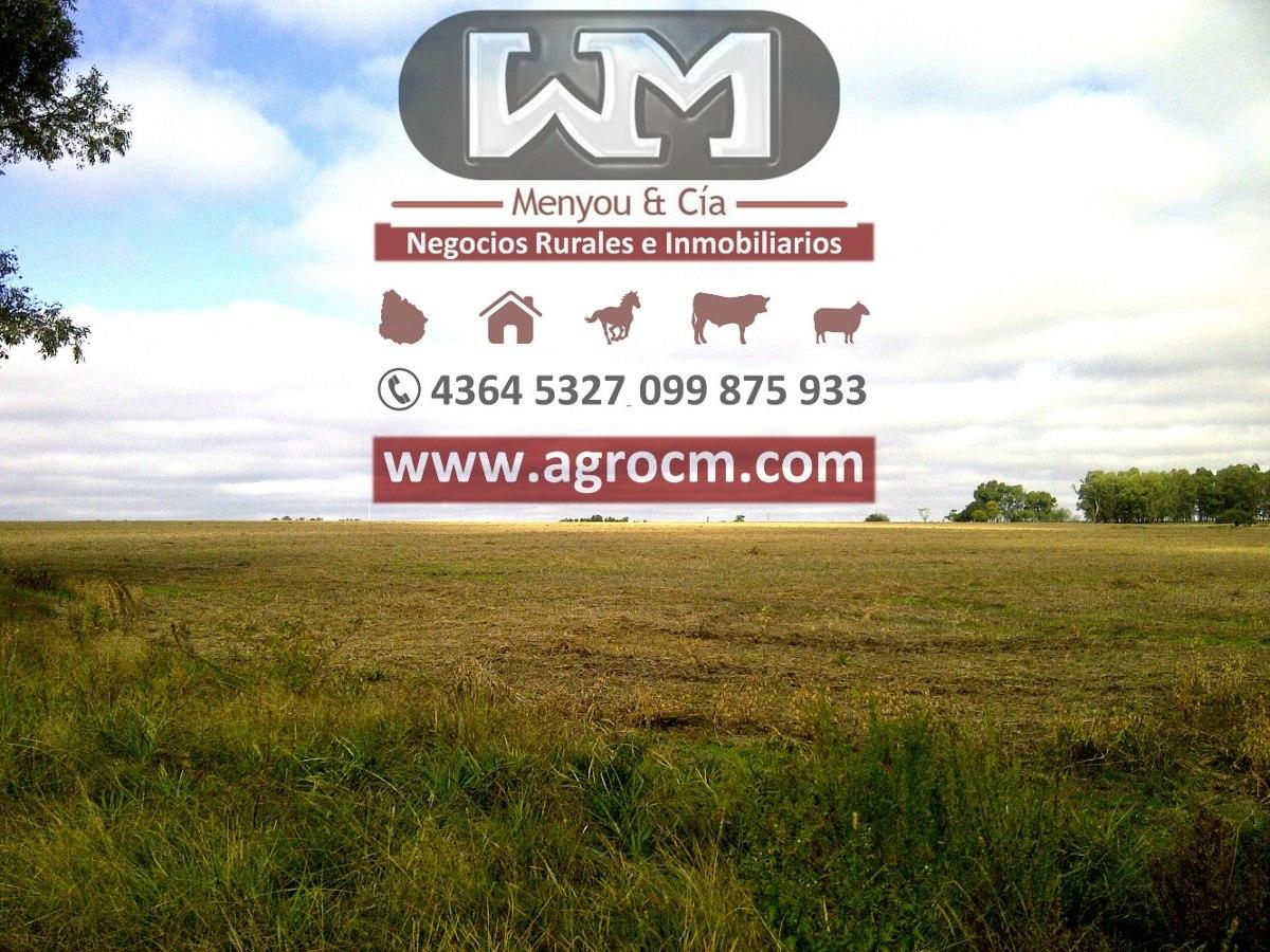 venta campo flores 534 hectáreas mixto a 7 km de la ciudad