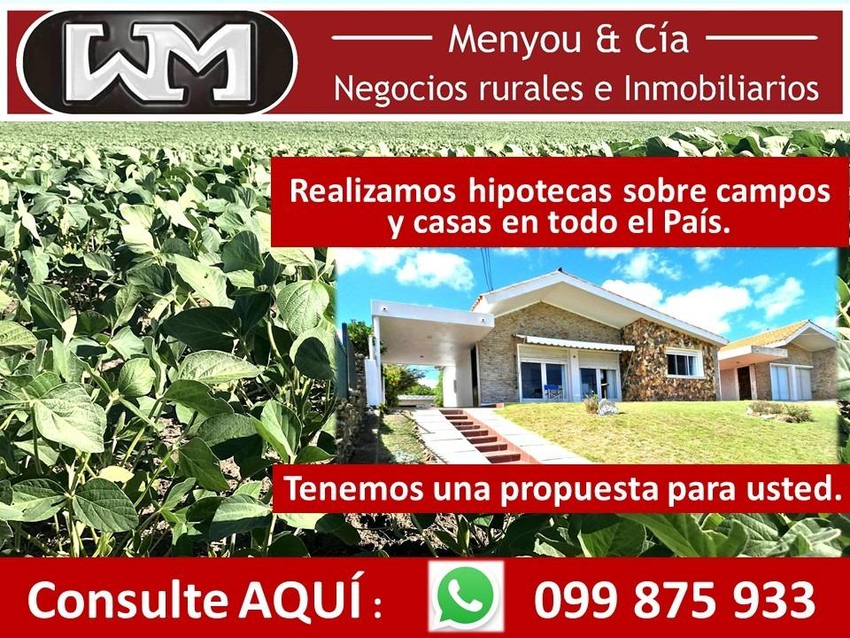 venta campo flores hipotecas en campos y casas en uruguay