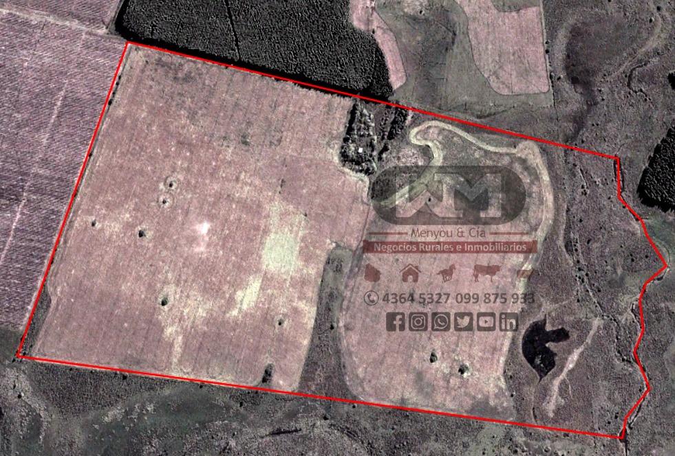 venta campo rió negro 73 hectáreas 80% agrícola coneat 166