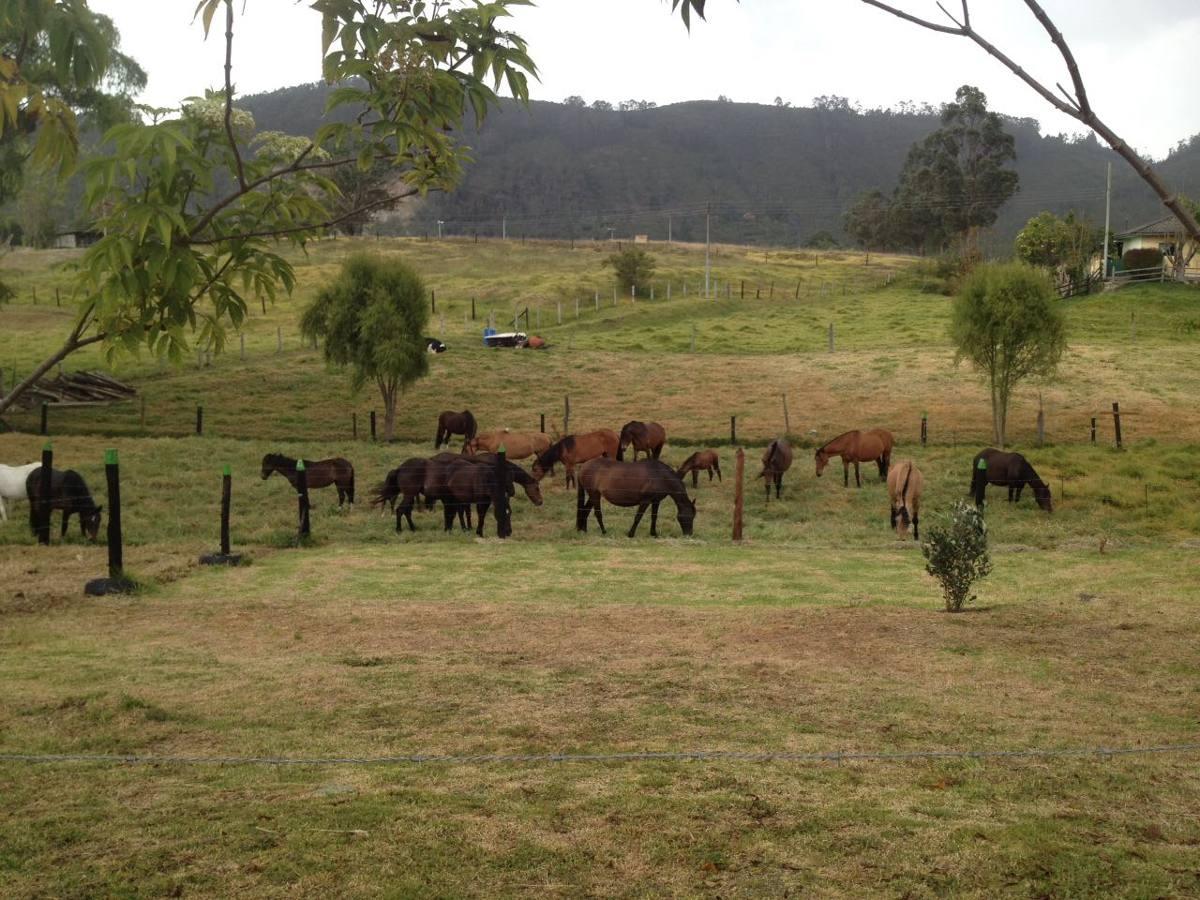 venta casa campestre rural