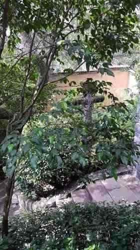 venta casa en el fraccionamiento lomas de santa fe, 800mt2.