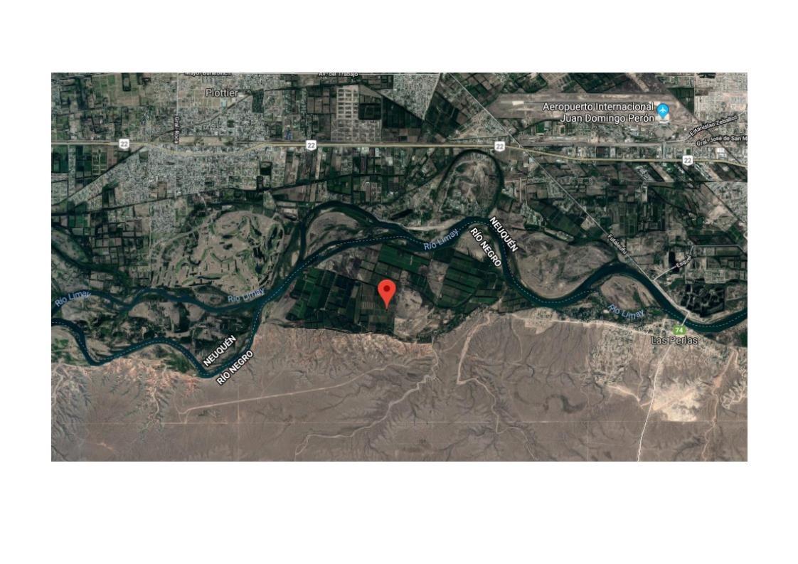 venta chacra de 24 hectáreas en balsa las perlas río negro