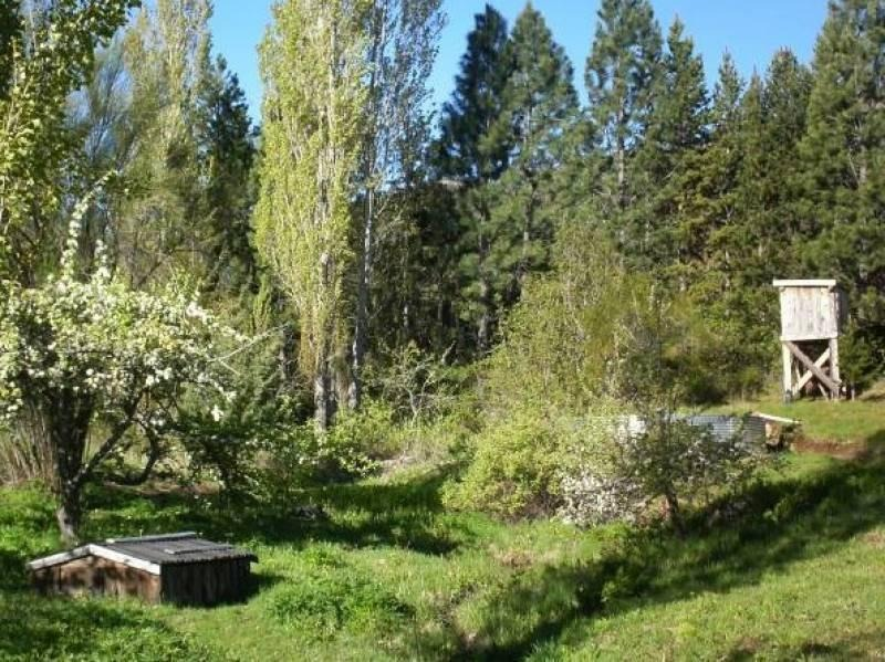 venta chacra parquizada con bosque nativo