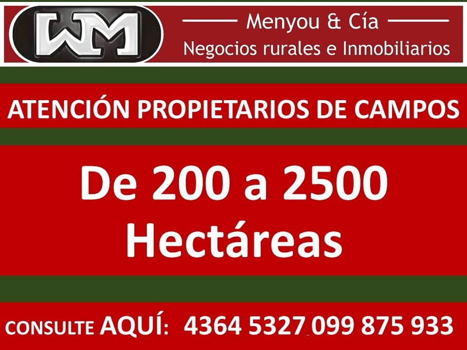 venta compra de campo de 200has a 2500has forestal ganadero