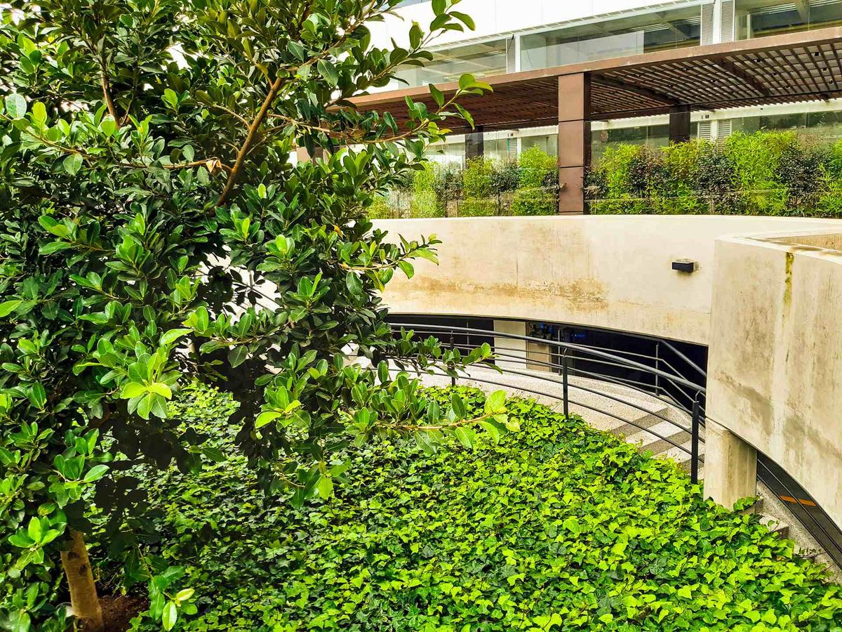 venta consultorio sabana park cajica-1509578