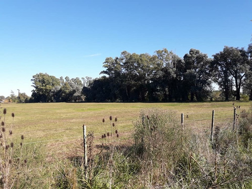venta de 2 parcelas de 3,5 hectareas a 100 mts de ruta 5