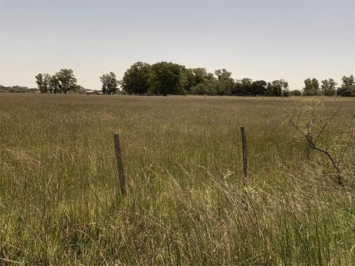 venta de 30 hectareas