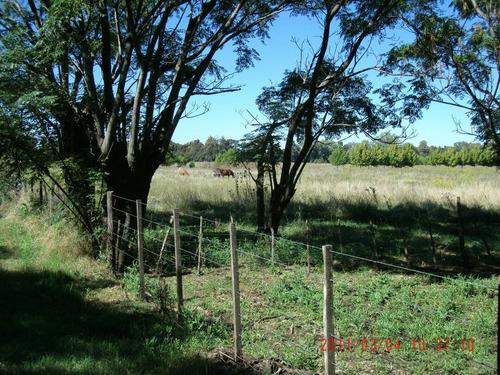 venta de 8 hectáreas a 10 min del centro de lujan
