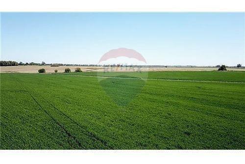 venta de campo agrícola sin mejoras
