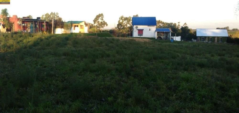 venta de chacra. con 5 casas en rosario/colonia.