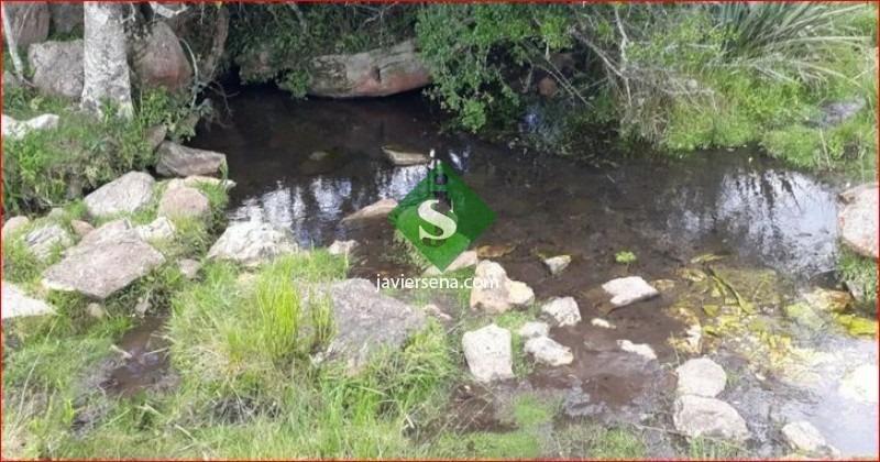 venta de chacra en aigua, 14 hectareas, agua, buena casa.- ref: 167627