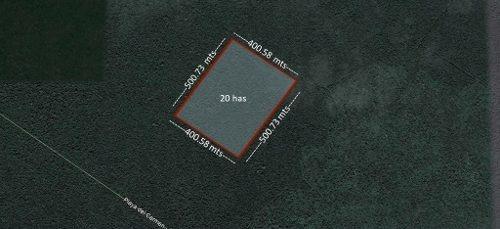 venta de excelente terreno en playa del carmen de 20 hectáreas