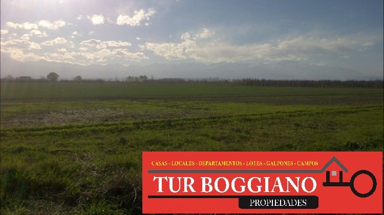 venta de finca en tunuyan (24,6 hectareas aprox.)