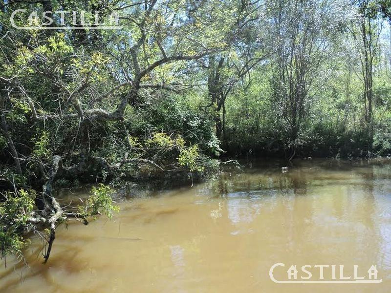 venta de fracción de 15 ha en arroyo grande segunda sección del delta