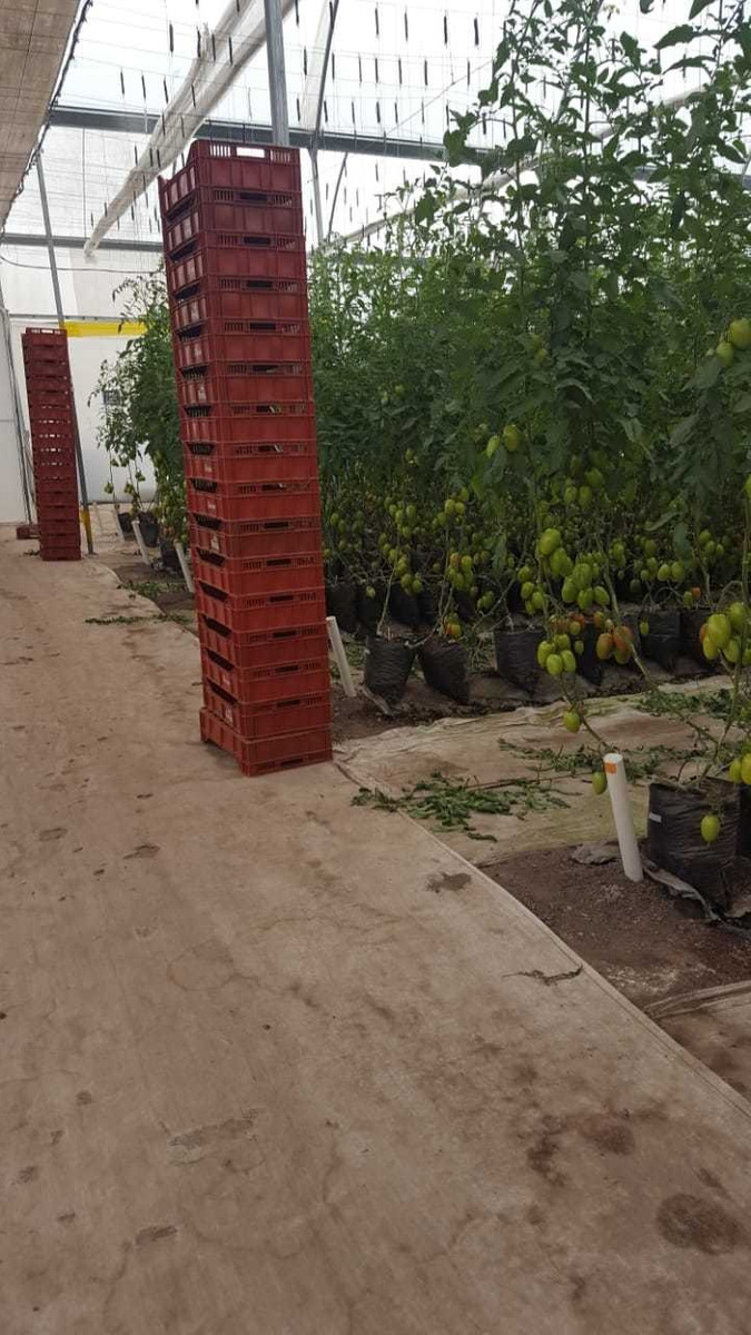 venta de hacienda con invernaderos.