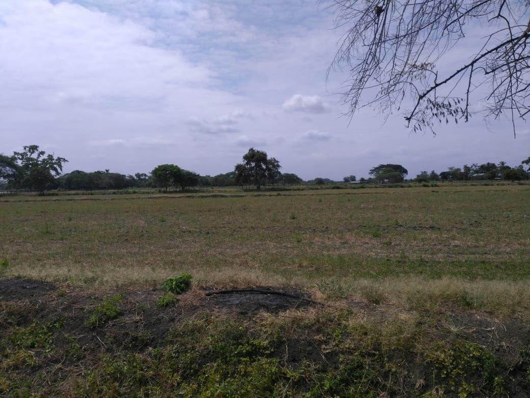 venta de hacienda en yaguachi ( de oportunidad )