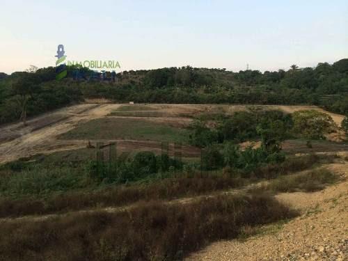venta de hectáreas en colonia insurgentes de poza rica, se encuentran ubicadas en la calle prolongación 20 de noviembre de la colonia insurgentes, cuenta con 43000 m², son 120 m de frente por 358 m d