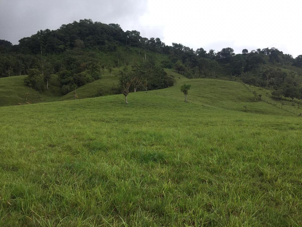 venta de hermosa finca 120 hectáreas - municipio de oiba