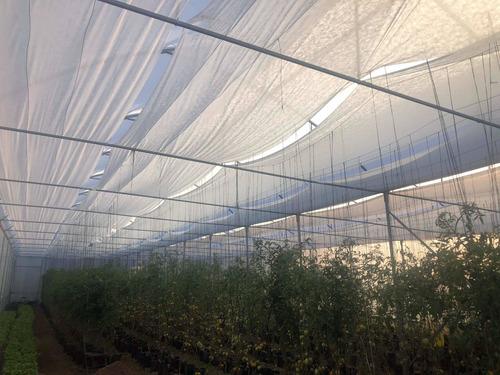 venta de invernadero 500 m2 metros solo estructura