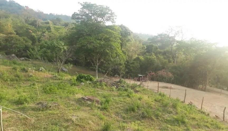 venta de lotes viota cundinamarca vereda brasil