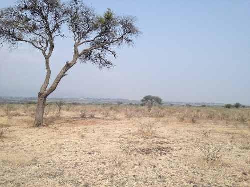 venta de  macrolote uso de suelo industrial en el estado de guanajuato mex.