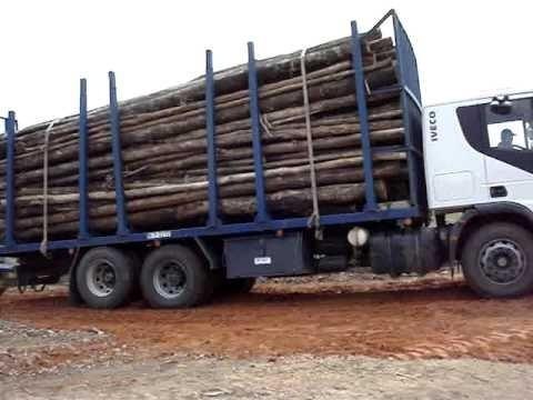 venta de madera y reparaciones de cerca