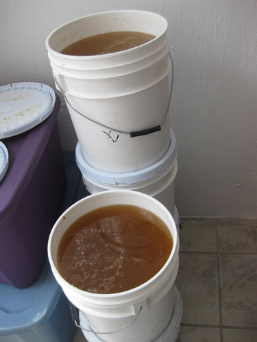 venta de miel pura de abeja directo apiario precio por kilo