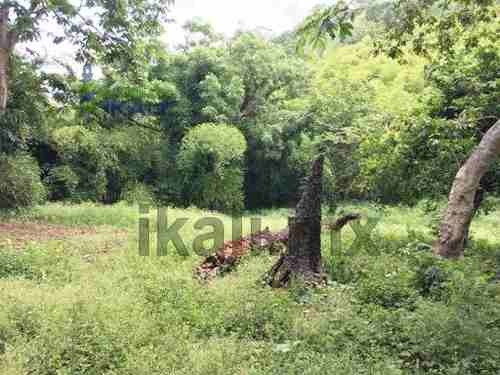 venta de rancho 30 hectáreas en villa avila camacho puebla, se encuentran ubicadas en lindero del rio el metate frente a la comunidad de el manguito en villa avila camacho, puebla, es un predio rural