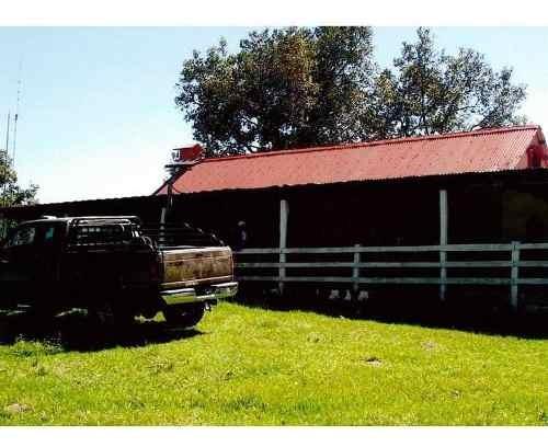 venta de rancho en tamaulipas carretera manuel - aldama