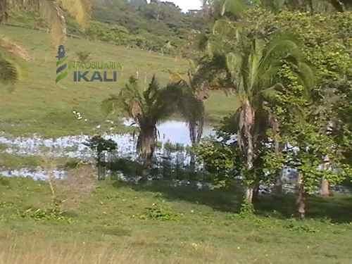 venta de rancho o finca ganadera en carretera tuxpan - cazones 25 has. se encuentra ubicado en carretera tuxpan - cazones, desviándose hacia el mar en rancho nuevo 3.5 km., junto a una comunidad, cue