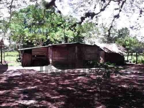 venta de rancho o finca ganadera en tuxpan ver, 25 hectáreas con frente de río. ubicado muy cerca de villa hermosa veracruz entrando por ojite, de 25 hectáreas dividido en 8 potreros, cuenta con 4 pr