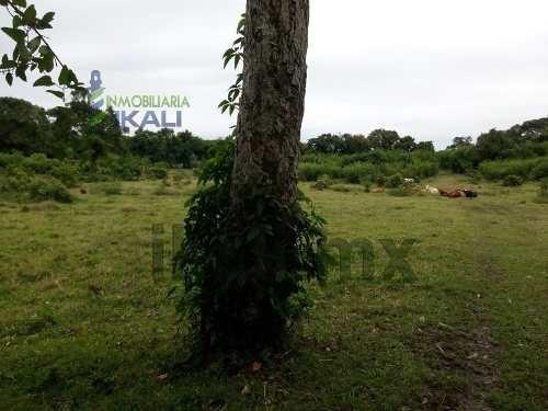 venta de rancho o finca ganadera en tuxpan ver, 6 has. ubicado en carretera tuxpan- cazones km. 8 terreno de 6 hectáreas, actualmente se usa para ganado, ubicado en zona rural, el terreno esta cercad