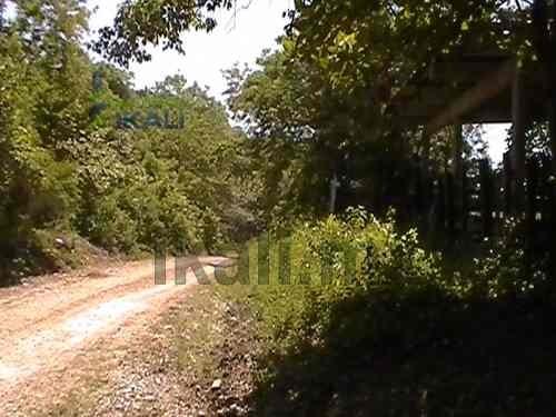 venta de rancho o finca ganadera en tuxpan veracruz de 11 has. ubicado en el camino a nalua adelante de juan lucas, es un terreno de 11 hectáreas a bordo del camino tiene 166 m de frente y 660 m de f
