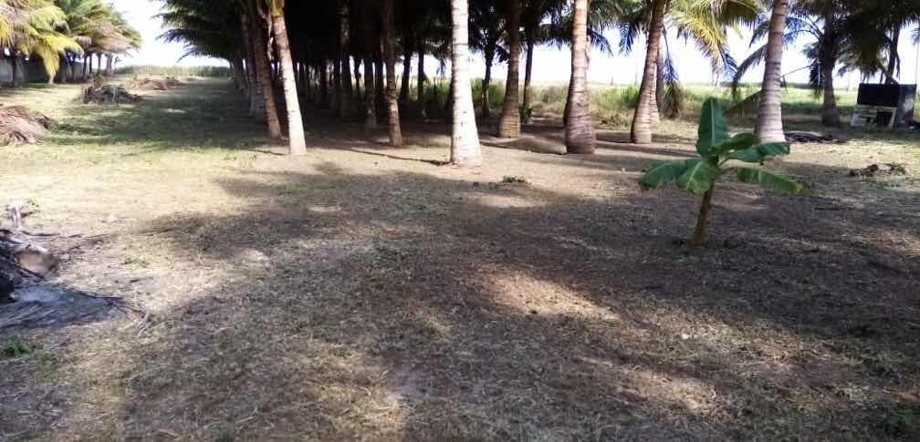 venta de terreno 4.000mts pedernales vía cojimies 0983882114