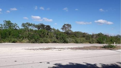 venta de terreno a minutos de la ciudad de mérida, en sierra papacal. 6.8 hectáreas.