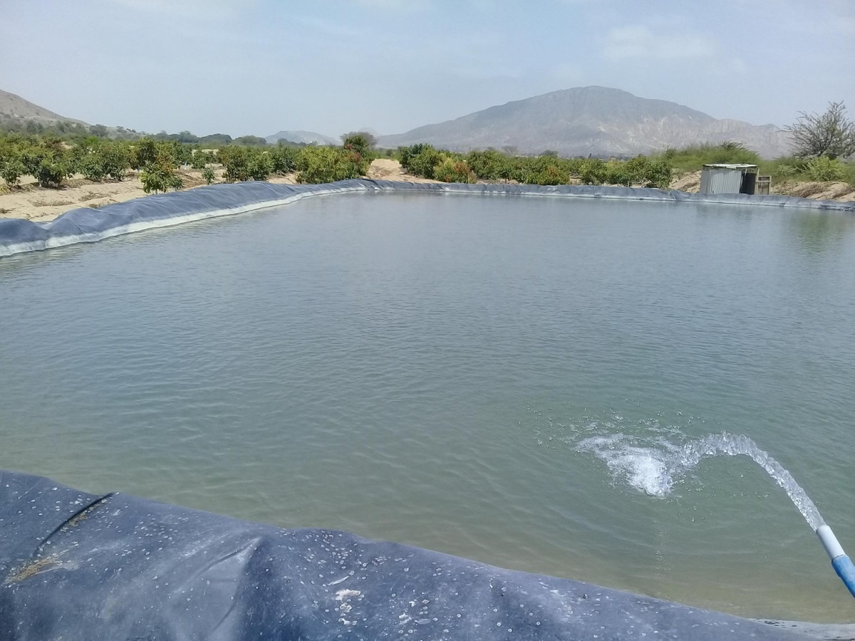 venta de terreno agrícola en chiclayo