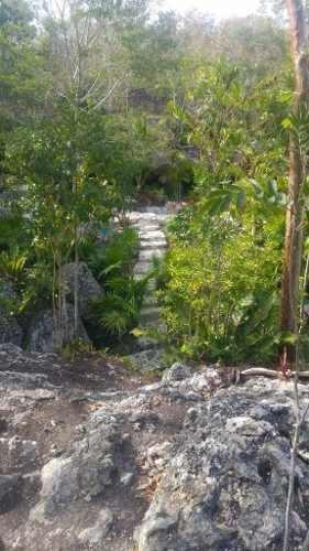 venta de terreno con cenote en isla mujeres
